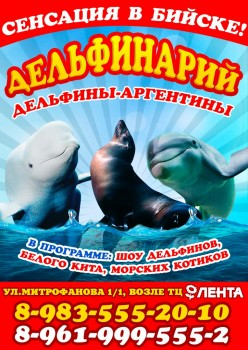 Дельфинарий в Бийске