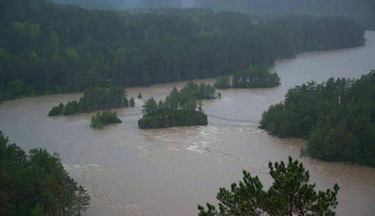 Вторая волна паводка пришла в Алтайский край